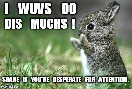 Bunny Love Desperate for Attention | I    WUVS    OO SHARE   IF   YOU'RE   DESPERATE   FOR   ATTENTION . DIS    MUCHS  ! | image tagged in bunny love,attention,desperate,love,wuv | made w/ Imgflip meme maker