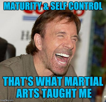 Memes, funny, Chuck Norris | MATURITY & SELF CONTROL THAT'S WHAT MARTIAL ARTS TAUGHT ME | image tagged in memes,funny,chuck norris | made w/ Imgflip meme maker