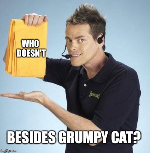 WHO DOESN'T BESIDES GRUMPY CAT? | made w/ Imgflip meme maker