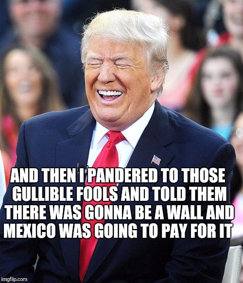 AND THEN I PANDERED TO THOSE GULLIBLE FOOLS AND TOLD THEM THERE WAS GONNA BE A WALL AND MEXICO WAS GOING TO PAY FOR IT | made w/ Imgflip meme maker