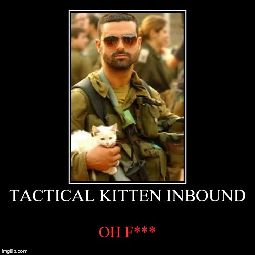 TACTICAL KITTEN INBOUND | OH F*** | image tagged in funny,demotivationals | made w/ Imgflip demotivational maker