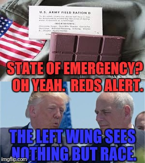 STATE OF EMERGENCY?  OH YEAH.  REDS ALERT. THE LEFT WING SEES NOTHING BUT RACE. | made w/ Imgflip meme maker