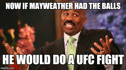 Steve Harvey Meme | NOW IF MAYWEATHER HAD THE BALLS HE WOULD DO A UFC FIGHT | image tagged in memes,steve harvey | made w/ Imgflip meme maker
