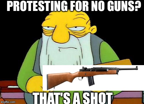 That's a paddlin' Meme | PROTESTING FOR NO GUNS? THAT'S A SHOT | image tagged in memes,that's a paddlin' | made w/ Imgflip meme maker
