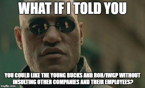 Matrix Morpheus Meme | WHAT IF I TOLD YOU YOU COULD LIKE THE YOUNG BUCKS AND ROH/IWGP WITHOUT INSULTING OTHER COMPANIES AND THEIR EMPLOYEES? | image tagged in memes,matrix morpheus | made w/ Imgflip meme maker