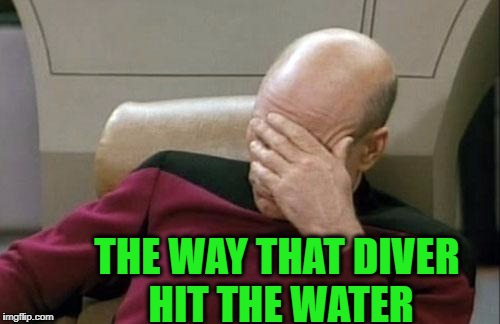 Captain Picard Facepalm Meme | THE WAY THAT DIVER HIT THE WATER | image tagged in memes,captain picard facepalm | made w/ Imgflip meme maker
