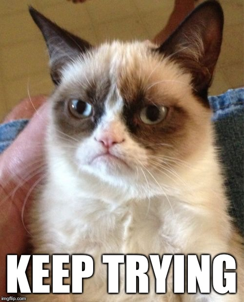 Grumpy Cat Meme | KEEP TRYING | image tagged in memes,grumpy cat | made w/ Imgflip meme maker
