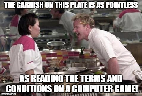 Angry Chef Gordon Ramsay Meme | THE GARNISH ON THIS PLATE IS AS POINTLESS AS READING THE TERMS AND CONDITIONS ON A COMPUTER GAME! | image tagged in memes,angry chef gordon ramsay | made w/ Imgflip meme maker