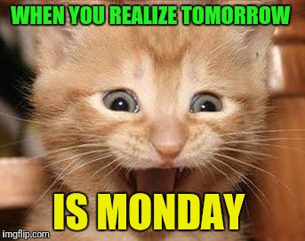 Excited Cat | WHEN YOU REALIZE TOMORROW IS MONDAY | image tagged in memes,excited cat | made w/ Imgflip meme maker