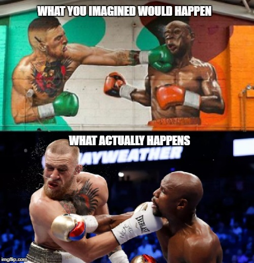 WHAT YOU IMAGINED WOULD HAPPEN WHAT ACTUALLY HAPPENS | image tagged in conor mcgregor,floyd mayweather,ufc | made w/ Imgflip meme maker