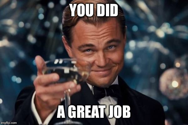 Leonardo Dicaprio Cheers Meme | YOU DID A GREAT JOB | image tagged in memes,leonardo dicaprio cheers | made w/ Imgflip meme maker