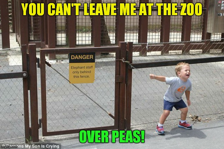 YOU CAN'T LEAVE ME AT THE ZOO OVER PEAS! | made w/ Imgflip meme maker