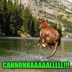 CANNONBAAAAALLLLL!!! | made w/ Imgflip meme maker