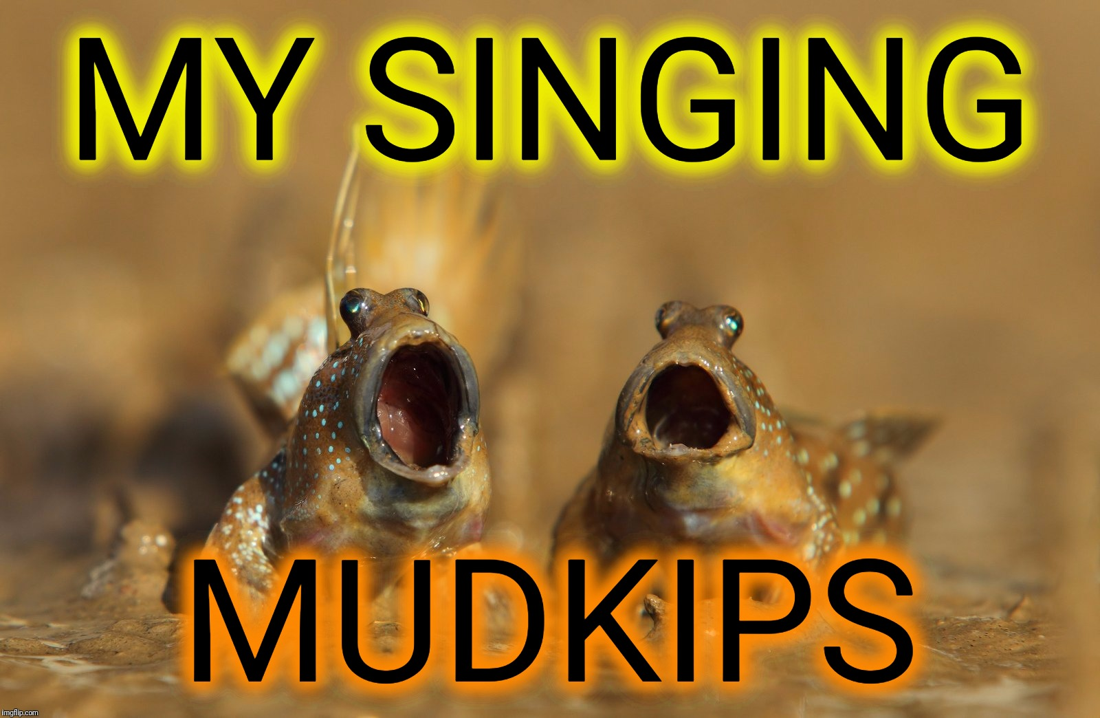 Bum, bum bum, ba da da... | MY SINGING MUDKIPS | image tagged in memes,my singing monsters,mudkip | made w/ Imgflip meme maker