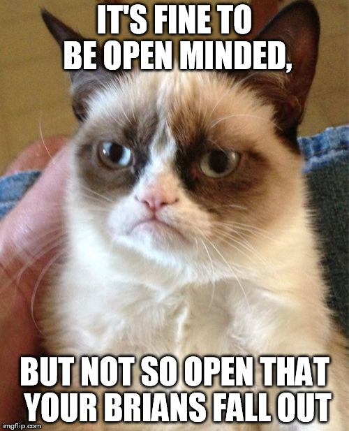 Grumpy Cat Meme | IT'S FINE TO BE OPEN MINDED, BUT NOT SO OPEN THAT YOUR BRIANS FALL OUT | image tagged in memes,grumpy cat | made w/ Imgflip meme maker