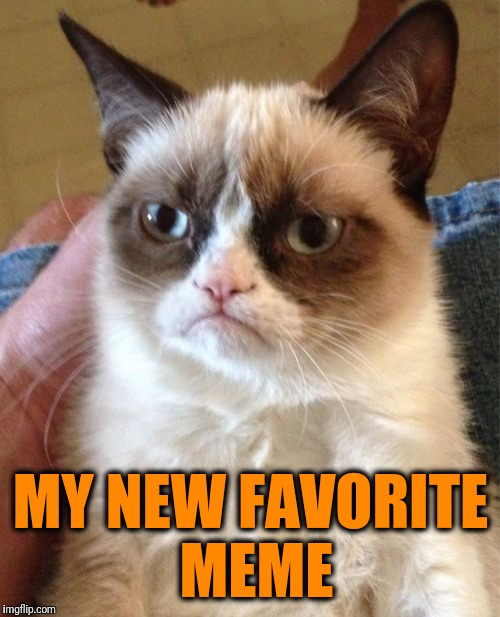 Grumpy Cat Meme | MY NEW FAVORITE MEME | image tagged in memes,grumpy cat | made w/ Imgflip meme maker