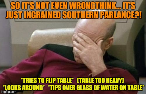 Captain Picard Facepalm Meme | SO IT'S NOT EVEN WRONGTHINK... IT'S JUST INGRAINED SOUTHERN PARLANCE?! *TRIES TO FLIP TABLE*   (TABLE TOO HEAVY)  *LOOKS AROUND*   *TIPS OVE | image tagged in memes,captain picard facepalm | made w/ Imgflip meme maker