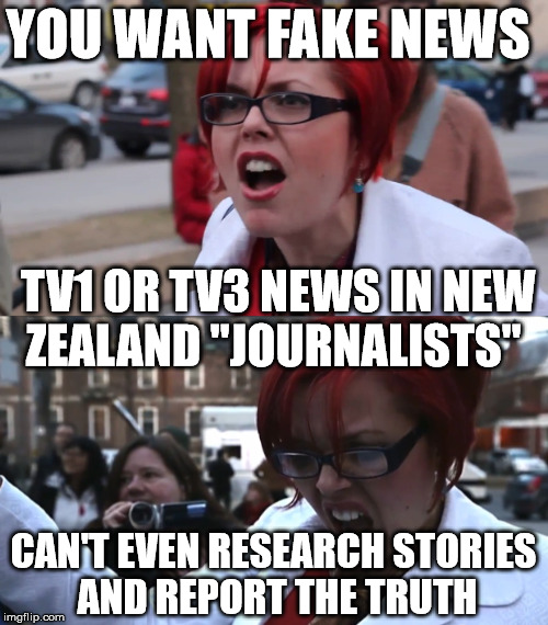 "YOU WANT FAKE NEWS CAN'T EVEN RESEARCH STORIES AND REPORT THE TRUTH TV1 OR TV3 NEWS IN NEW ZEALAND ""JOURNALISTS"" 