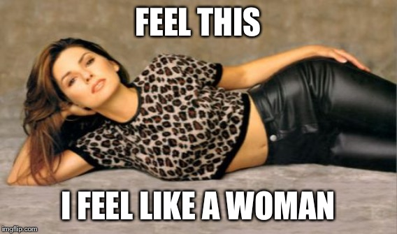 FEEL THIS I FEEL LIKE A WOMAN | made w/ Imgflip meme maker