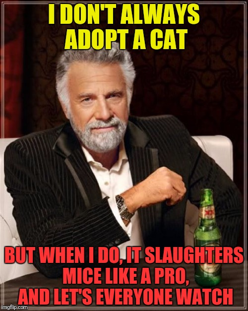 The Most Interesting Man In The World Meme | I DON'T ALWAYS ADOPT A CAT BUT WHEN I DO, IT SLAUGHTERS MICE LIKE A PRO, AND LET'S EVERYONE WATCH | image tagged in memes,the most interesting man in the world | made w/ Imgflip meme maker