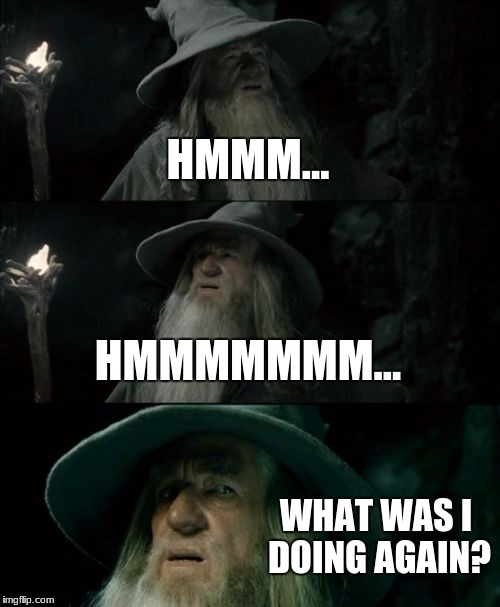 Confused Gandalf Meme | HMMM... HMMMMMMM... WHAT WAS I DOING AGAIN? | image tagged in memes,confused gandalf | made w/ Imgflip meme maker