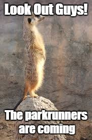 Meercat | Look Out Guys! The parkrunners are coming | image tagged in parkrun | made w/ Imgflip meme maker
