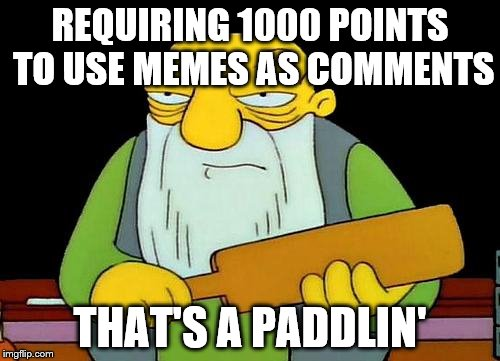 That's a paddlin' Meme | REQUIRING 1000 POINTS TO USE MEMES AS COMMENTS THAT'S A PADDLIN' | image tagged in memes,that's a paddlin' | made w/ Imgflip meme maker