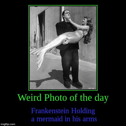 I think I will Carry on this series Since Juicydeath may not be come back | Weird Photo of the day | Frankenstein Holding a mermaid in his arms | image tagged in funny,demotivationals,frankenstein,mermaid,weird photo of the day | made w/ Imgflip demotivational maker