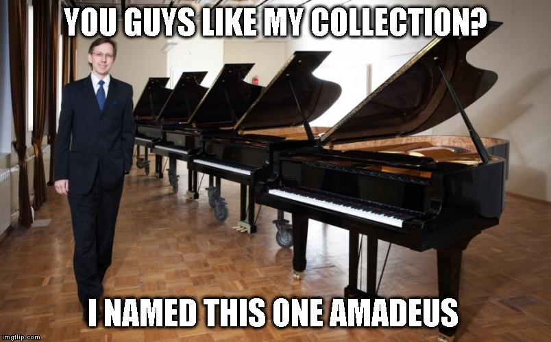 When you're the only Pianist in your group of friends | YOU GUYS LIKE MY COLLECTION? I NAMED THIS ONE AMADEUS | image tagged in memes,funny,first world problems | made w/ Imgflip meme maker