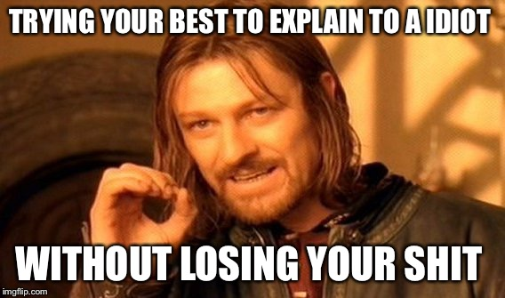 One Does Not Simply Meme | TRYING YOUR BEST TO EXPLAIN TO A IDIOT WITHOUT LOSING YOUR SHIT | image tagged in memes,one does not simply | made w/ Imgflip meme maker