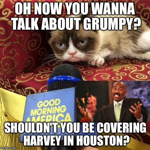 Hurricane Grumpy Cat | OH NOW YOU WANNA TALK ABOUT GRUMPY? SHOULDN'T YOU BE COVERING HARVEY IN HOUSTON? | image tagged in grumpy cat news,steve harvey,hurricane harvey,emergency,fake news,disgusted news reporter | made w/ Imgflip meme maker