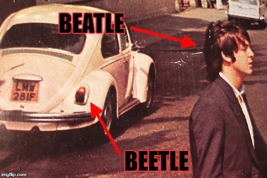 BEATLE BEETLE | made w/ Imgflip meme maker