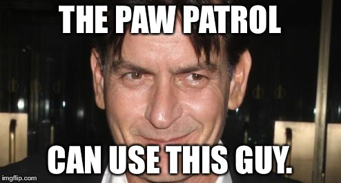charlie sheen | THE PAW PATROL CAN USE THIS GUY. | image tagged in charlie sheen | made w/ Imgflip meme maker