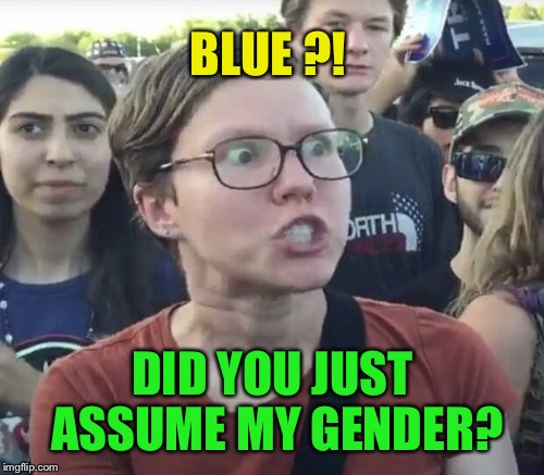 BLUE ?! DID YOU JUST ASSUME MY GENDER? | made w/ Imgflip meme maker