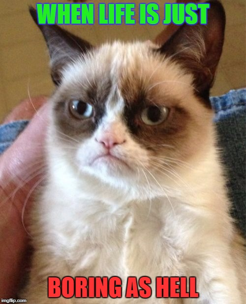 Grumpy Cat Meme | WHEN LIFE IS JUST BORING AS HELL | image tagged in memes,grumpy cat | made w/ Imgflip meme maker