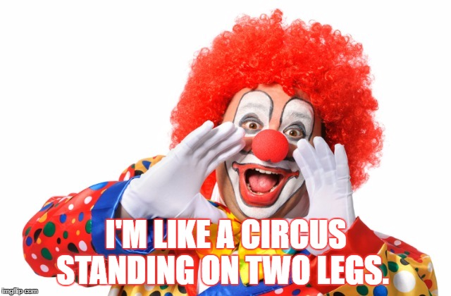 I'M LIKE A CIRCUS STANDING ON TWO LEGS. | image tagged in circusclownyelling | made w/ Imgflip meme maker