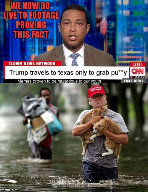 Well.. they got it kinda right... | WE NOW GO LIVE TO FOOTAGE PROVING THIS FACT | image tagged in cnn fake news,cnn spins trump news,hurricane harvey,donald trump,cats,save me | made w/ Imgflip meme maker