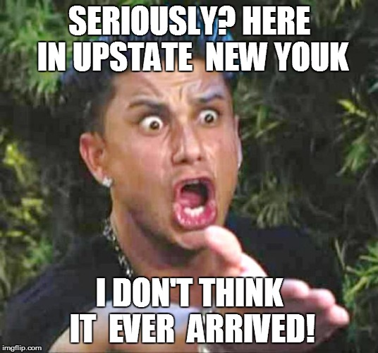 SERIOUSLY? HERE IN UPSTATE  NEW YOUK I DON'T THINK IT  EVER  ARRIVED! | made w/ Imgflip meme maker