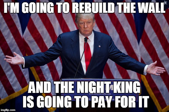 Donald Trump | I'M GOING TO REBUILD THE WALL AND THE NIGHT KING IS GOING TO PAY FOR IT | image tagged in donald trump | made w/ Imgflip meme maker