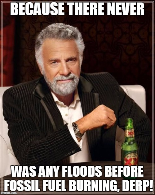 The Most Interesting Man In The World Meme | BECAUSE THERE NEVER WAS ANY FLOODS BEFORE FOSSIL FUEL BURNING, DERP! | image tagged in memes,the most interesting man in the world | made w/ Imgflip meme maker