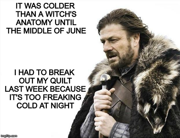 Brace Yourselves X is Coming Meme | IT WAS COLDER THAN A WITCH'S ANATOMY UNTIL THE MIDDLE OF JUNE I HAD TO BREAK OUT MY QUILT LAST WEEK BECAUSE IT'S TOO FREAKING COLD AT NIGHT | image tagged in memes,brace yourselves x is coming | made w/ Imgflip meme maker