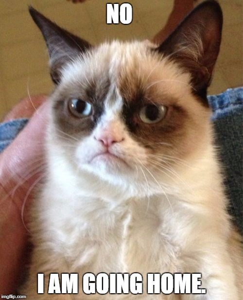 Grumpy Cat Meme | NO I AM GOING HOME. | image tagged in memes,grumpy cat | made w/ Imgflip meme maker