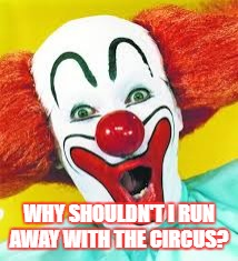 clown | WHY SHOULDN'T I RUN AWAY WITH THE CIRCUS? | image tagged in clown | made w/ Imgflip meme maker