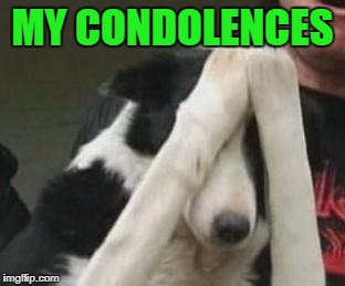 MY CONDOLENCES | made w/ Imgflip meme maker