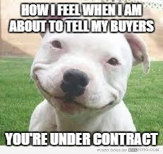 Happy Friday Puppy | HOW I FEEL WHEN I AM ABOUT TO TELL MY BUYERS YOU'RE UNDER CONTRACT | image tagged in happy friday puppy | made w/ Imgflip meme maker