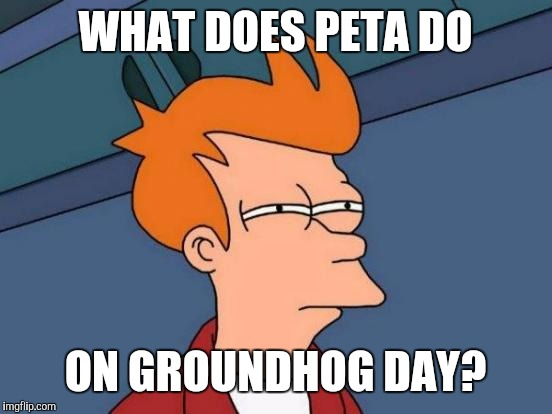 Futurama Fry Meme | WHAT DOES PETA DO ON GROUNDHOG DAY? | image tagged in memes,futurama fry | made w/ Imgflip meme maker
