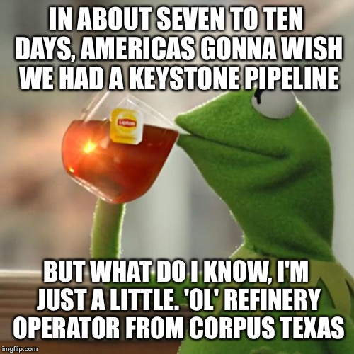 But Thats None Of My Business Meme | IN ABOUT SEVEN TO TEN DAYS, AMERICAS GONNA WISH WE HAD A KEYSTONE PIPELINE BUT WHAT DO I KNOW, I'M JUST A LITTLE. 'OL' REFINERY OPERATOR FRO | image tagged in memes,but thats none of my business,kermit the frog | made w/ Imgflip meme maker