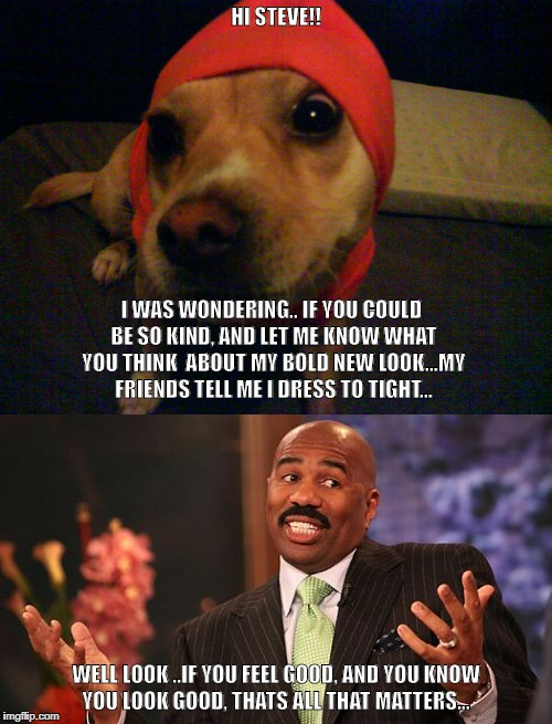 HI STEVE!! WELL LOOK ..IF YOU FEEL GOOD, AND YOU KNOW YOU LOOK GOOD, THATS ALL THAT MATTERS... I WAS WONDERING.. IF YOU COULD BE SO KIND, AN | image tagged in steve harvey | made w/ Imgflip meme maker