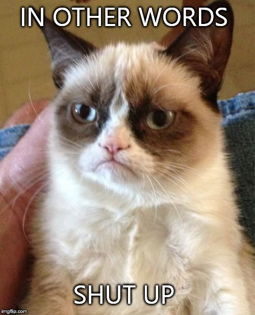 Grumpy Cat Meme | IN OTHER WORDS SHUT UP | image tagged in memes,grumpy cat | made w/ Imgflip meme maker