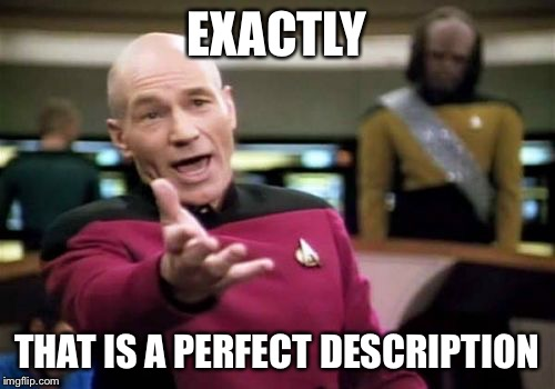 Picard Wtf Meme | EXACTLY THAT IS A PERFECT DESCRIPTION | image tagged in memes,picard wtf | made w/ Imgflip meme maker